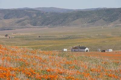 Antelope Valley_California USA