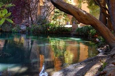 palace water