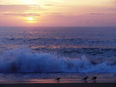 Sunrise over Kittyhawk