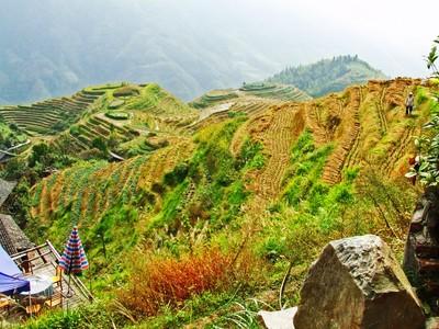 Dragonback Terrace Mountain