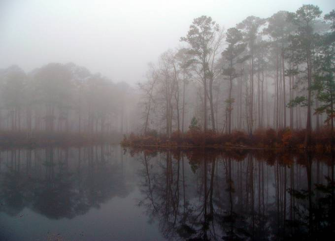 Catfish pond aboard MCAS Cherry Point with the early morning fog