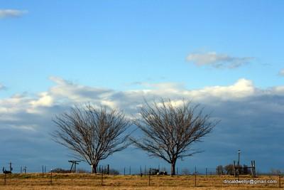 The Texas Sky