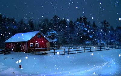Winter Blue