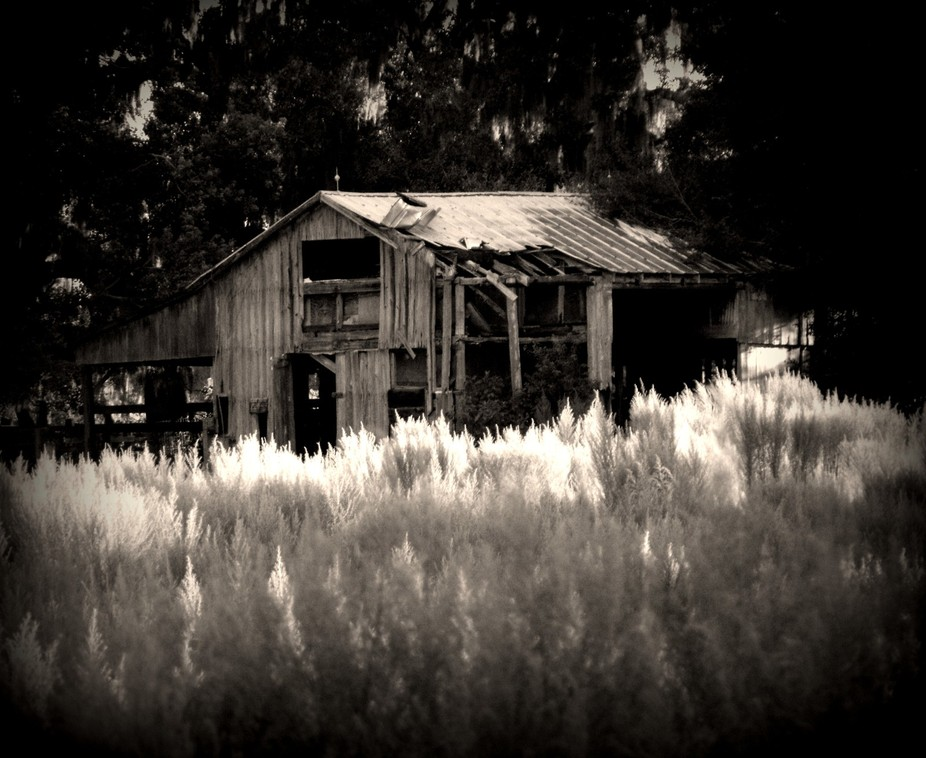 BARN IN FIELD  IN BLACK AN WHITE