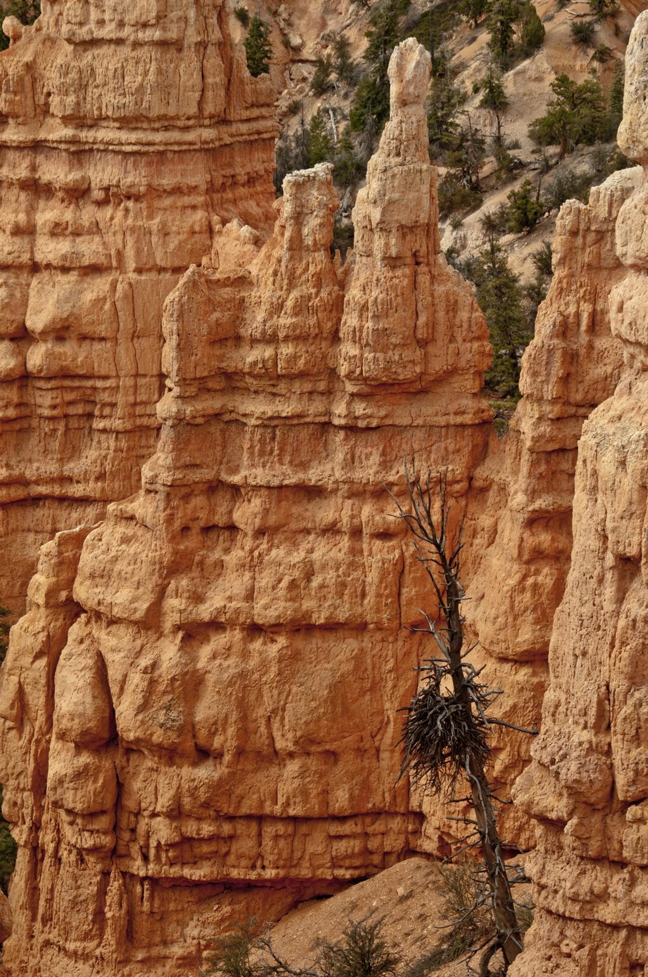 Bryce Canyon -11