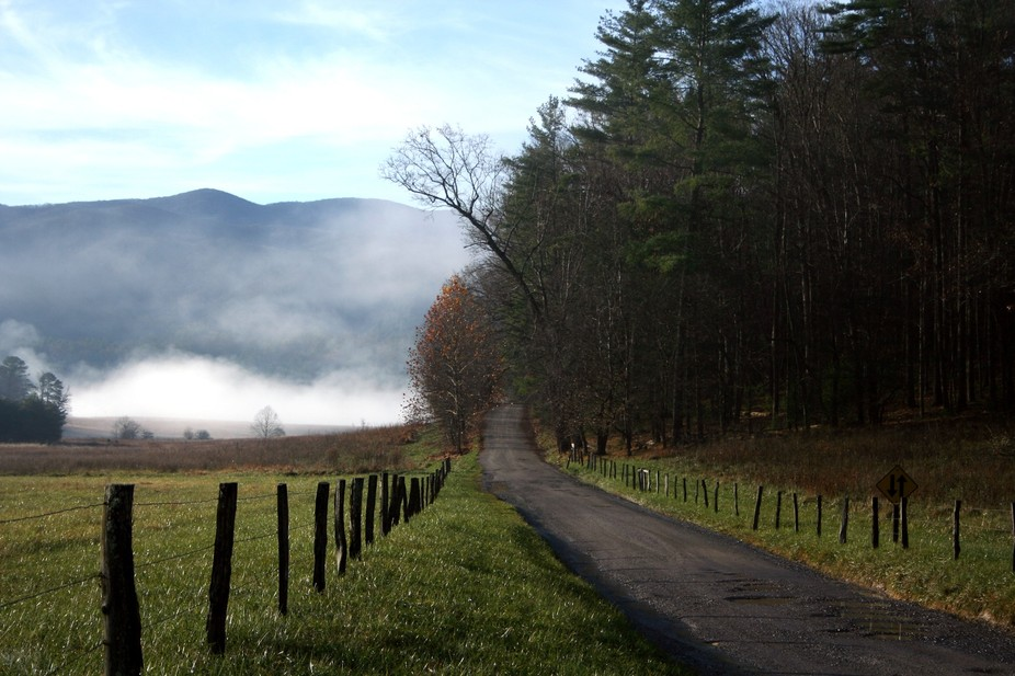 Early Morning Cades Cove TN