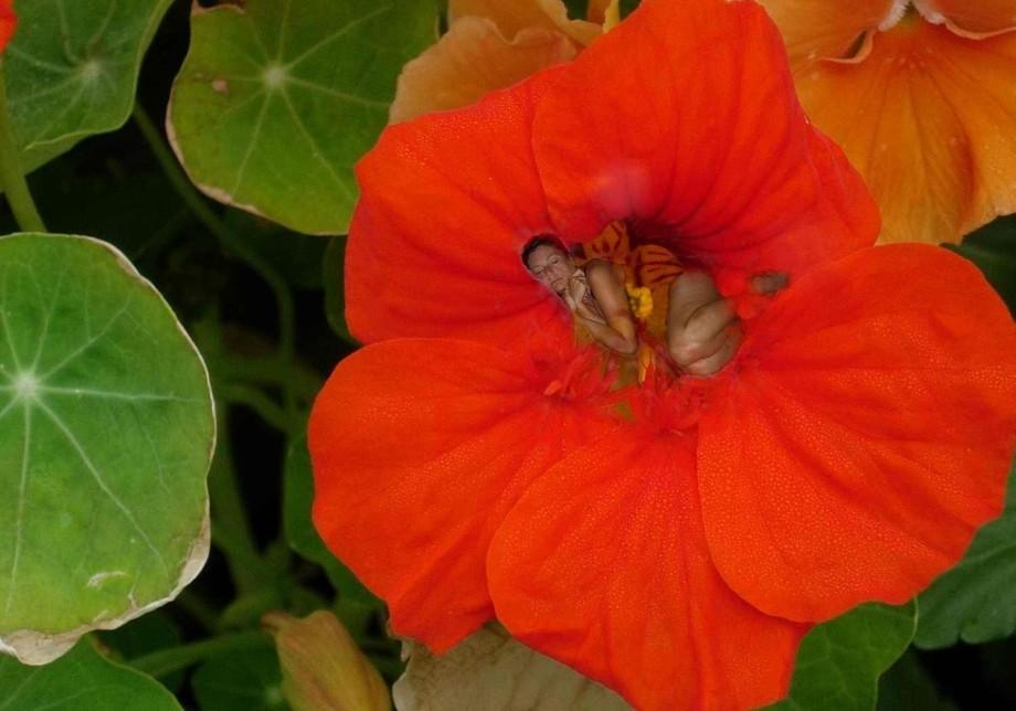lisa in red flower