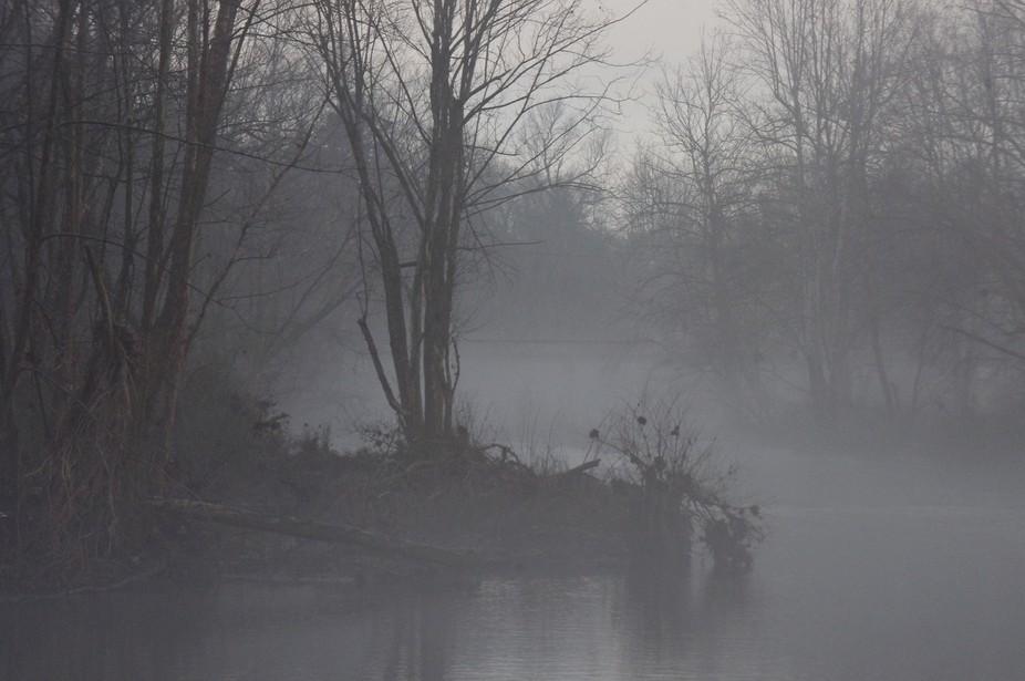 Fog on the Caddo - 2/01/12
