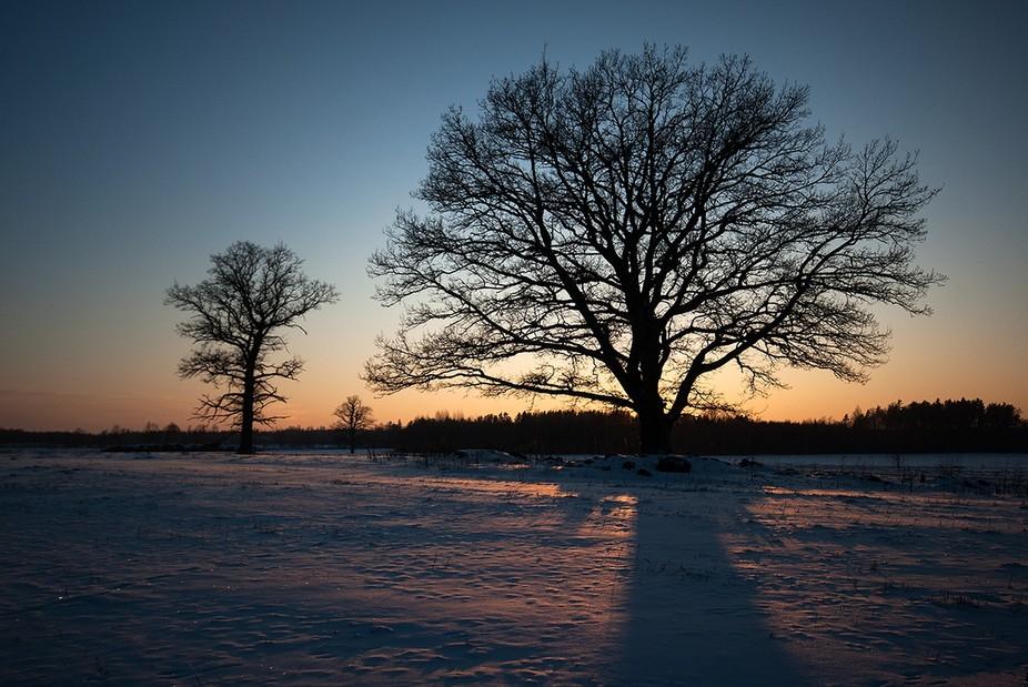 winter evening -25C