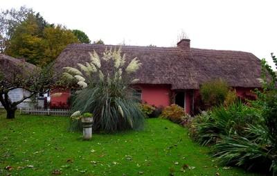 Cottage Near Limerick Ireland