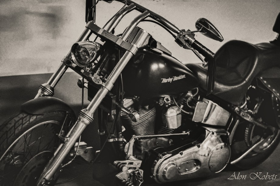 Harley-Davidson2