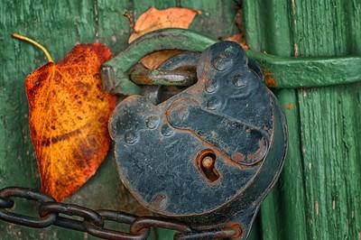 Lock and leaf
