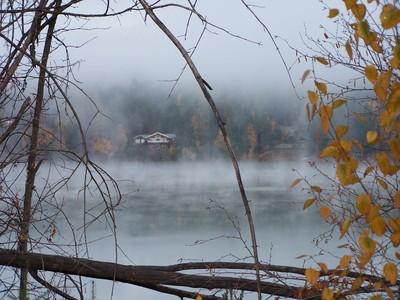 Cabin in the Mist