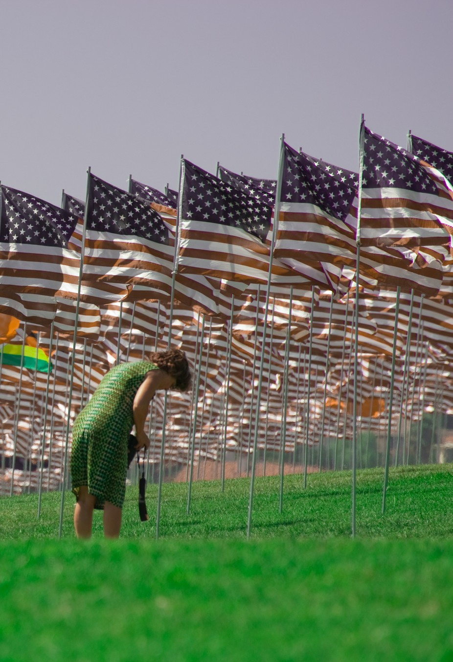 A lady, searching for a loved one\'s memorial flag, on Memorial Day, in Malibu California.