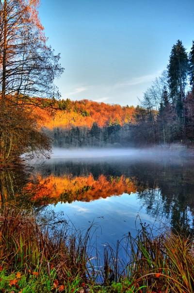 Steinhauser Waldsee