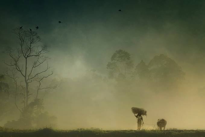 Before The Sun Goes Home by harrysulistio - Mist And Drizzle Photo Contest