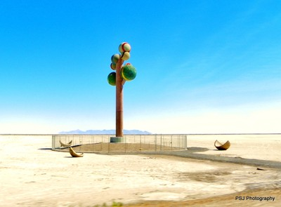 Metaphor, the Tree of Utah in the Bonneville Salt Flats
