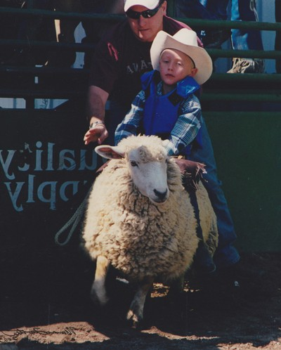 Bronco Sheep Buster