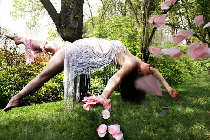 Petals by mgaige2012 - The Art Of Levitation Photo Contest