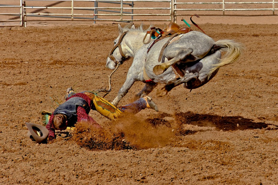 The horse wins in this saddle bronc ride.