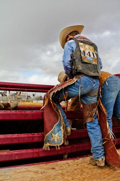 Bull Rider 141