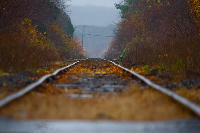 Autumn Track by Dire - Empty Railways Photo Contest
