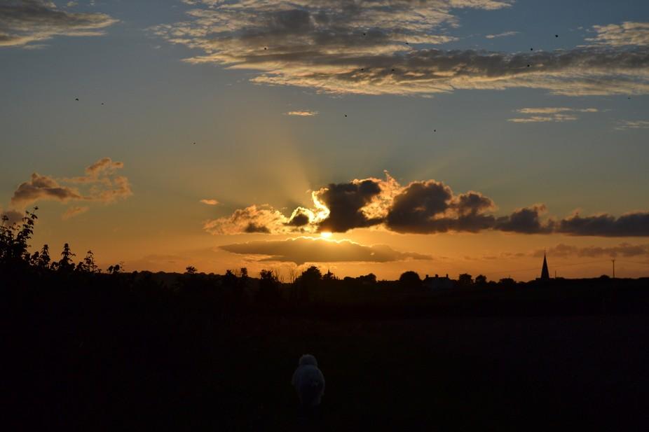 sun set by quantocks somerset
