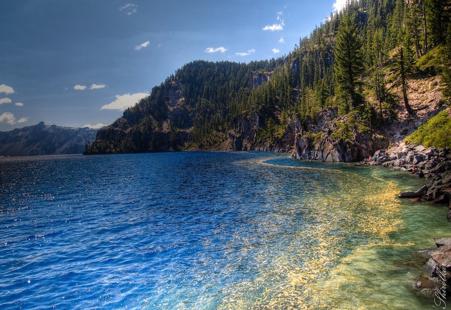A swarm of pollen envelopes the shoreline of a clear blue lake