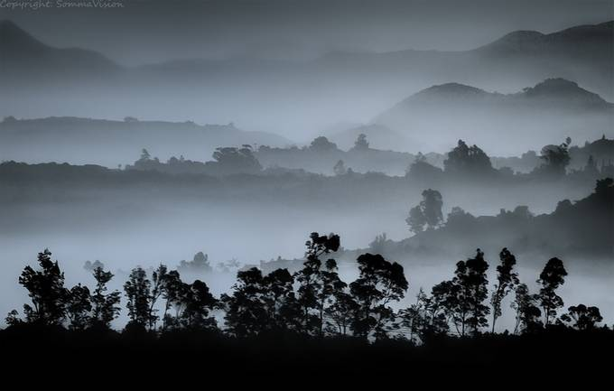 misty-mountain-tops by FrankSomma - Silhouettes Of Trees Photo Contest