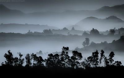 misty-mountain-tops