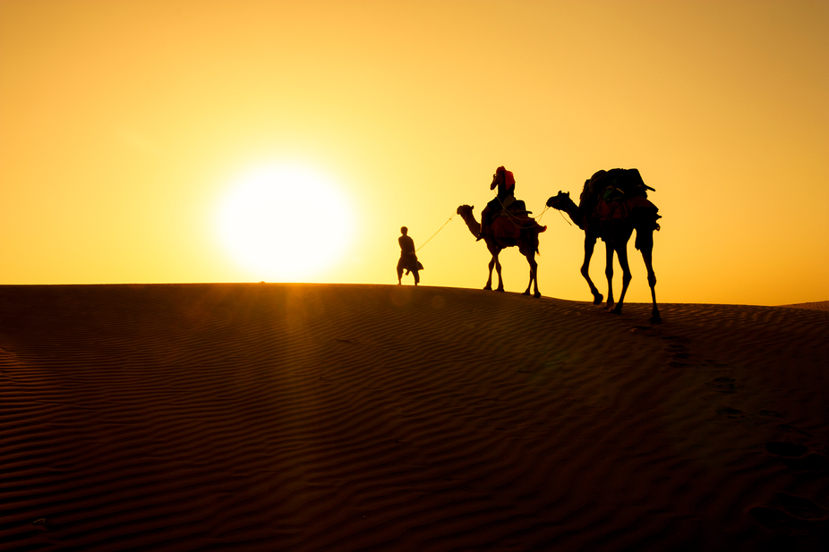 Camel trek in the Thar Desert. After being thrown off my own camel into the sand, with my camera,...