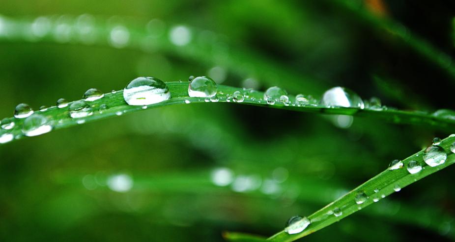 Waterdroplet