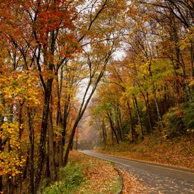 A road through the Great Smoky Mountain National Park in Tennessee during late October, 2012.