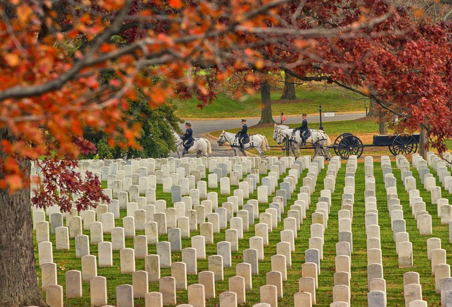 Fall in Arlington National Cemetery