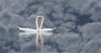how in the 7th sky(heaven), wie im 7. Himmel