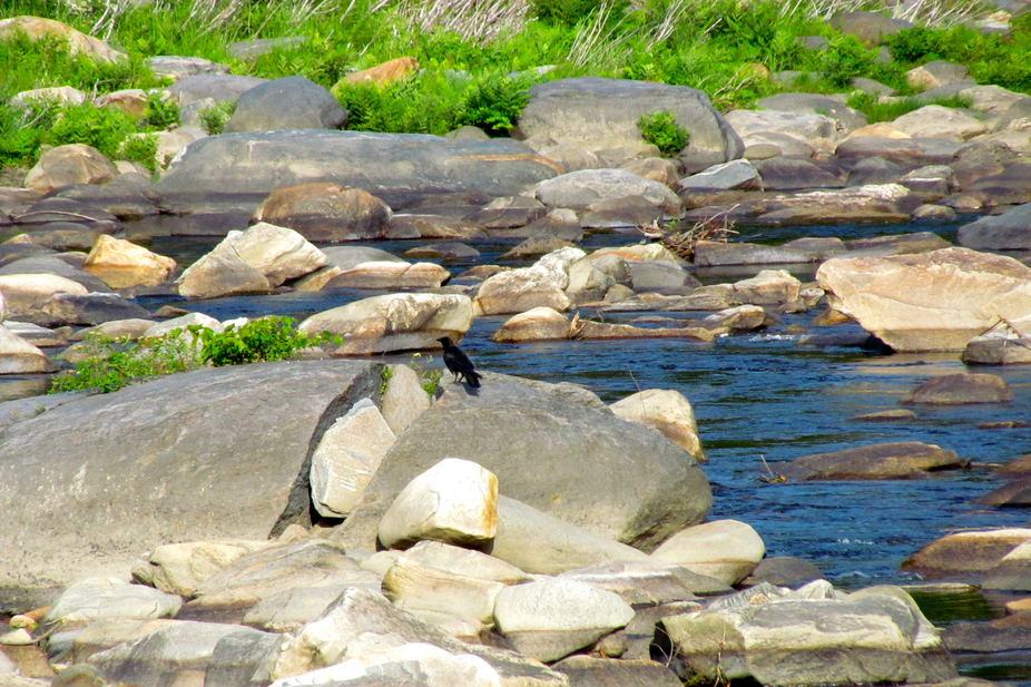 This is the Deerfield River as it bisects Shelburne Falls and Buckland, MA.  Slightly upstream fr...
