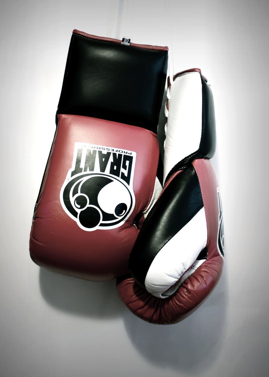Grant Professional Boxing Gloves By Jonathanisrael