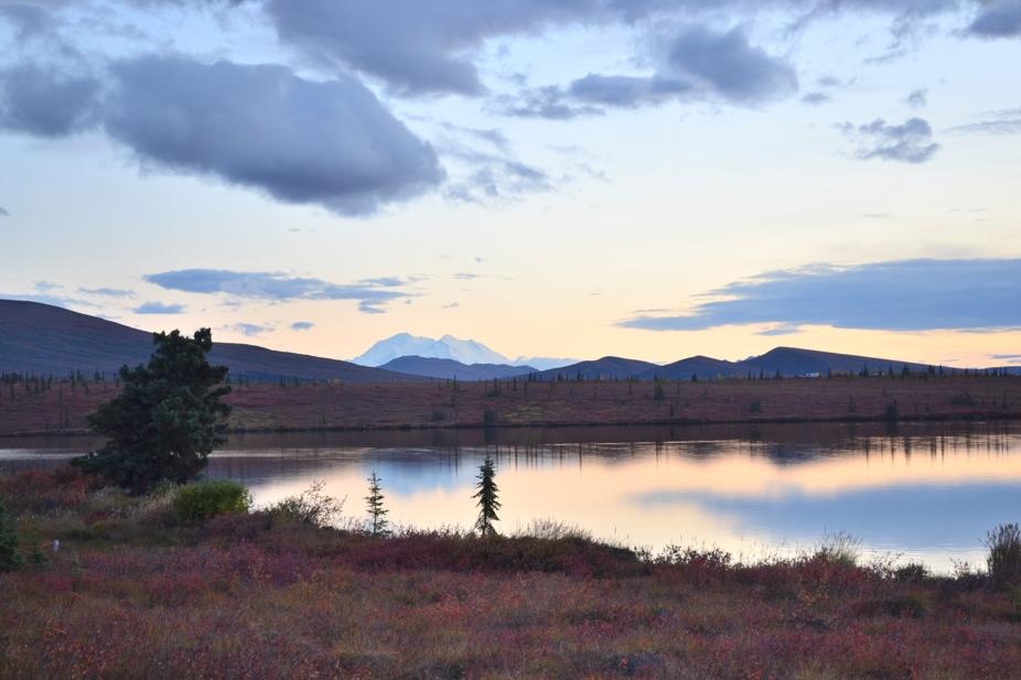 8 Mile Lake And Mt.McKinley In Denali National Park Alaska
