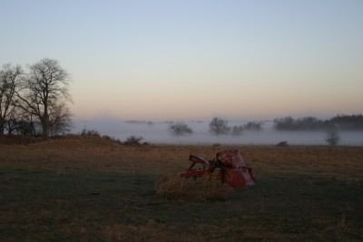 The Forgotten Farm Implement