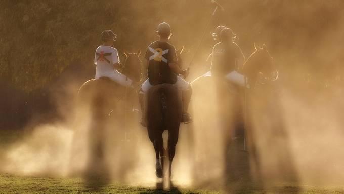 Evening polo game @ San Pancho