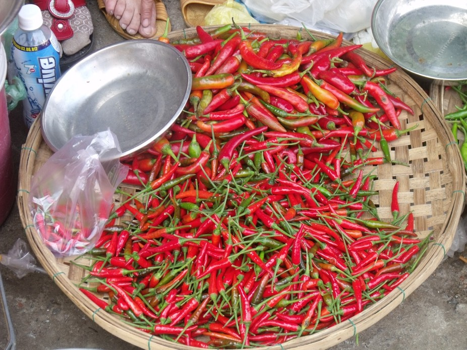 Red hot chillie peppers