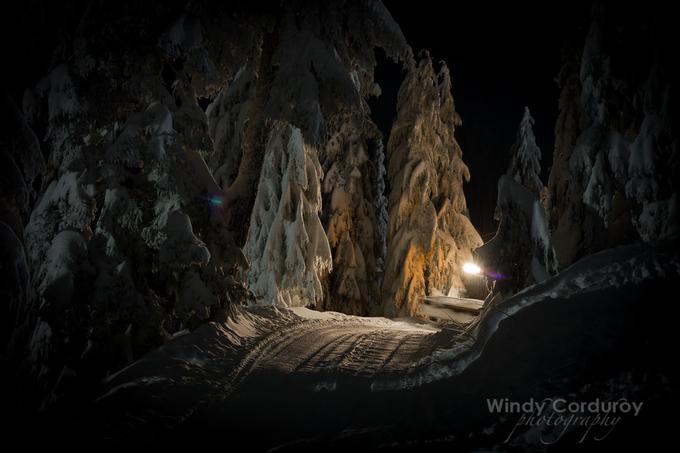 Winter Wonderland by windycorduroy - Dark Forest Photo Contest