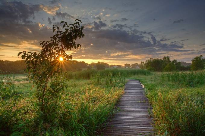 Sunrise on the Wetland Boardwalk by ghamer - Boardwalks Photo Contest