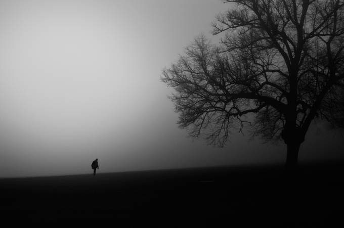 Anybody out There by mikaelsundberg - Mist And Drizzle Photo Contest