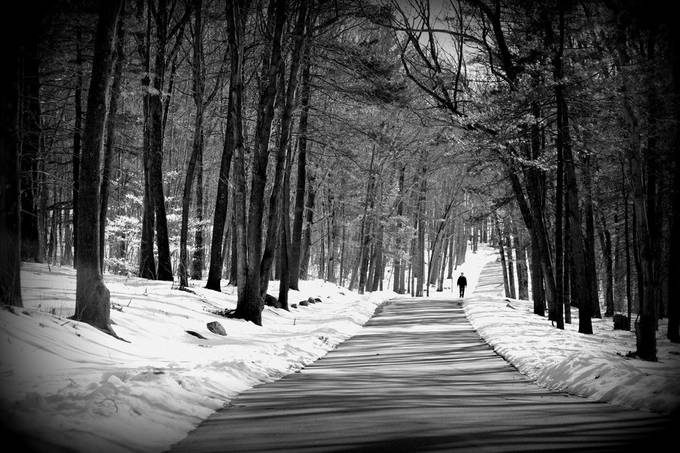 Winter's Solitude by carolcardillo - Take A Stroll Photo Contest