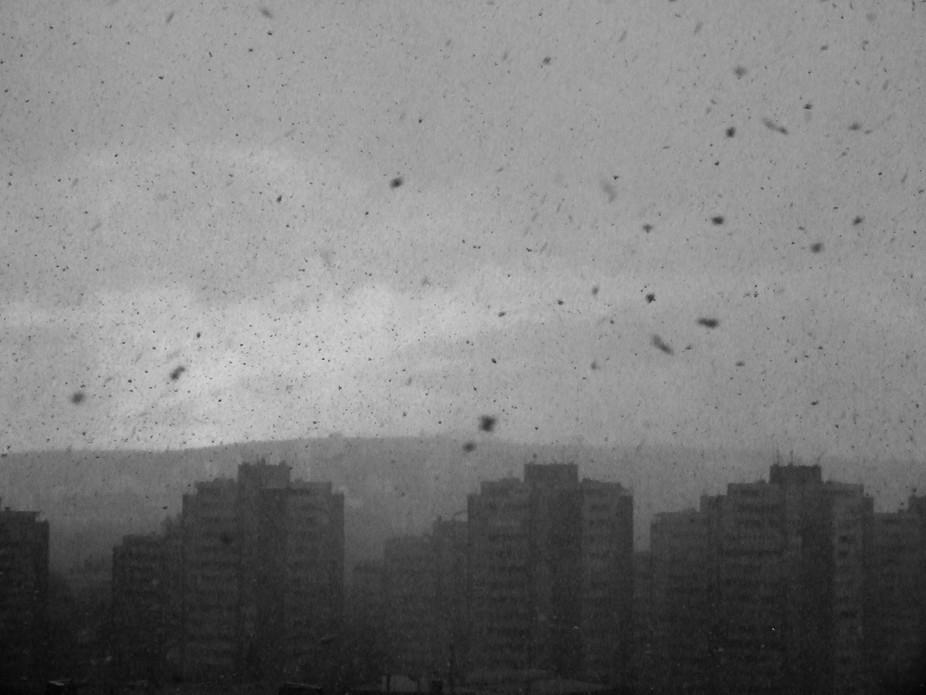 winter snow storm city buildings sky