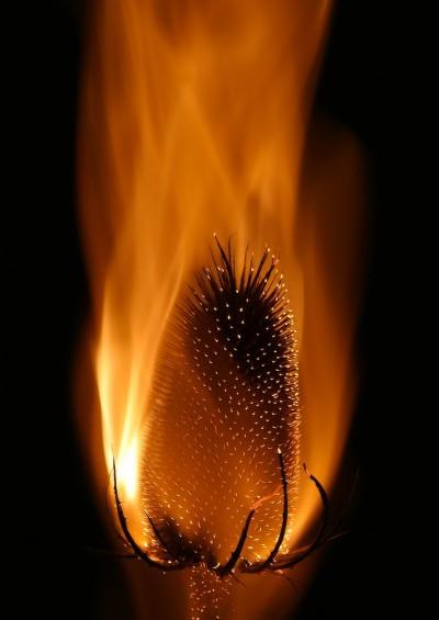 Smokey flames