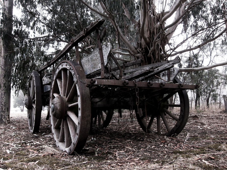 Old cart