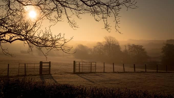 Rushton Gate Sunrise by byrnephotography - Rails and Fences Photo Contest