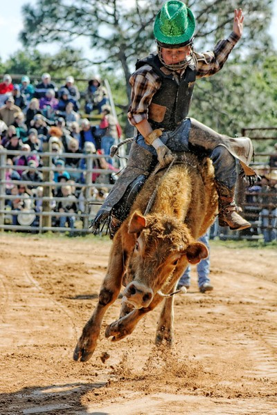Junior Bullrider